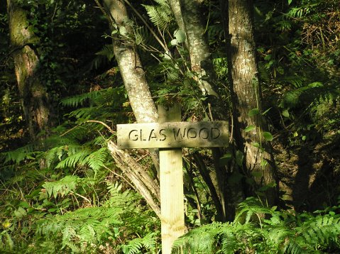 Coed Glas entrance sign